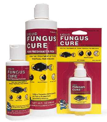 FUNGUS CURE™